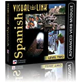 Visual Link Spanish Level 2 Verb Course [Windows Only][CD-ROM]