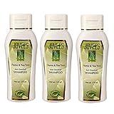 Jovees Thyme & Tea Tree Anti Dandruff Shampoo (Pack Of 3) 110 Ml