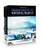 Werner Herzog - Encounters in the Natural World Boxset (includes Encounters at the End of the World, Grizzly Man, White Diamond, La Soufriere & Flying Doctors of East Africa) [Blu-ray]