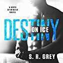 Destiny on Ice: Boys of Winter Book 1 Hörbuch von S. R. Grey Gesprochen von: Tracy Marks
