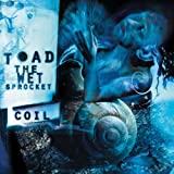 Coil by Toad the Wet Sprocket [Music CD]