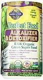 Garden of Life Perfect Food® RAW - Alkalizer & Detoxifier Organic Powder, 285g Powder