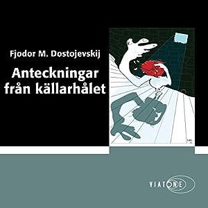 Anteckningar från källarhålet [Notes From Underground] Audiobook