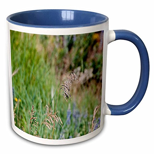 Jos Fauxtographee Realistic - A Weed Floating in the Wind on a Grassy Weed Backdrop with Spots of Blue and Yellow - 11oz Two-Tone Blue Mug (mug_47445_6)