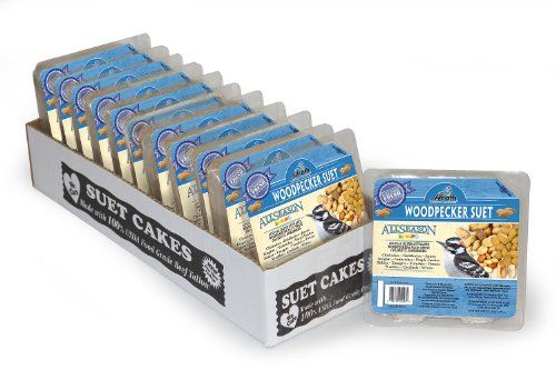 Heath Outdoor Products DD-24 Woodpecker Suet Cake, Case of 12