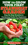 How To Grow Your First Strawberry Garden