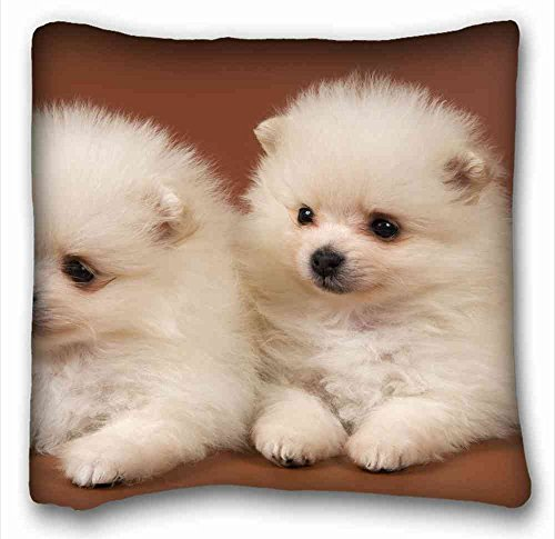 soft-pillow-case-cover-animals-pomsky-puppies-pillow-covers-bedding-accessories-size-16x16-suitable-