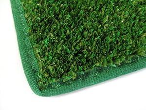 Amazon Indoor Outdoor Turf Rug 4 x8 GREEN