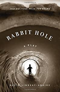 "Cover of ""Rabbit Hole"""