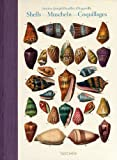 Shells - Muscheln - Coquillages: Conchology or the Natural History of Sea, Freshwater, Terrestrial and Fossil Shells 1780