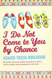 Adaobi Tricia Nwaubani I Do Not Come to You by Chance