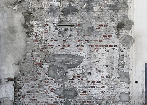 Abwaschbare Tapete In Steinoptik : galerie-24 Vlies Tapete Rasch Factory II 445404 Wandbild Beton Rohputz
