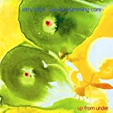 echange, troc Larry Ochs - Out Trios /Vol.5 : Out From Under