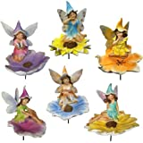 Terrapin Trading Flower Fairies Statue, Set of 6