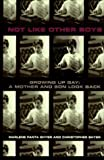 img - for Not Like Other Boys 1st edition by Shyer, Christopher, Shyer, Marlene Fanta (1996) Hardcover book / textbook / text book