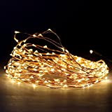 72 Ft. Warm White Plug in 200 LED Starry Copper Wire Holiday String Lights with Six Hour Auto Timer