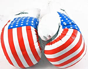 Click here to buy 1 Pair USA 14oz Boxing Gloves New Punching Gloves by Shelter.