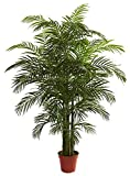 Nearly Natural 5390 Areca Palm UV Resistant Tree, 6.5-Feet, Green