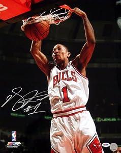 Derrick Rose Autographed Chicago Bulls 16x20 Photo #10 PSA DNA