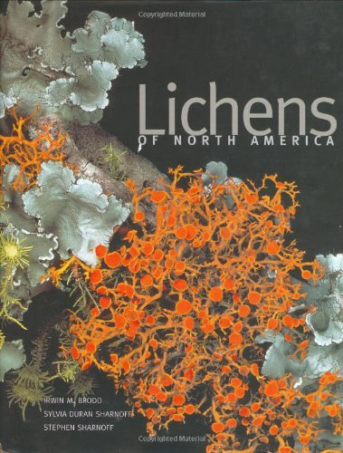 Lichens of North America by Irwin M. Brodo (2001-10-01)