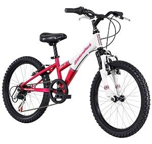 Diamondback Bicycles 2014 Tess Junior Girl