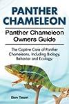 Panther Chameleon. Panther Chameleon...