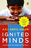 img - for Ignited Minds book / textbook / text book