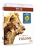 echange, troc Félins - Inclus le documentaire Pollen [Blu-ray]