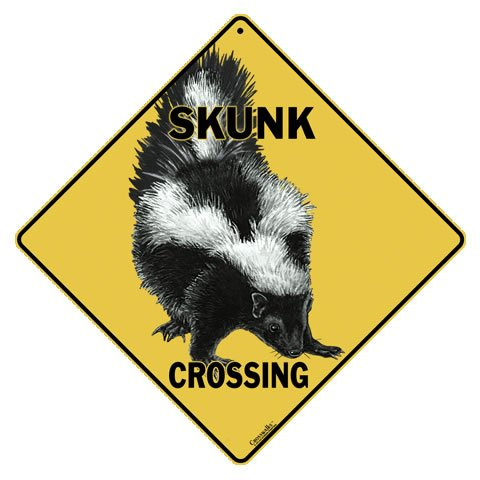 Skunk Crossing 12