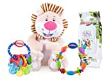 Nuby Teether and Toy Gift Set
