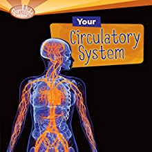 Your Circulatory System Audiobook by Conrad J. Storad Narrated by  Intuitive