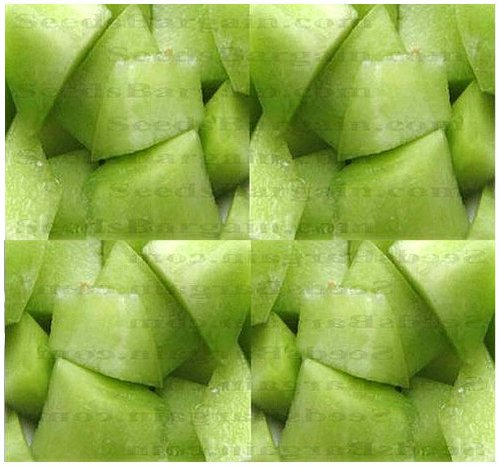 50+ HONEY DEW GREEN MELON CANTALOUPE seeds ~ HIGH in A, B, and C Vitamins ~