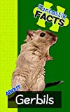 Fantastic Facts About Gerbils: Illustrated Fun Learning For Kids