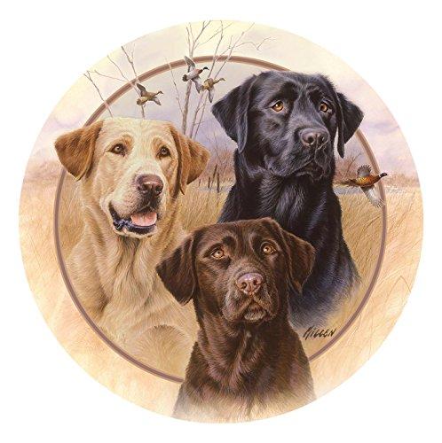 Animal Coaster Set - Labradors