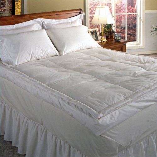 Why Should You Buy 233 Thread Count Down Pillow Top Featherbed Size: California King