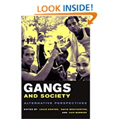 Gangs and Society