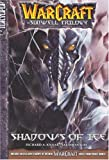 Shadows of Ice (WarCraft: The Sunwell Trilogy, Book 2)