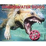 Underwater Dogs Calendar