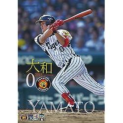 大和(阪神タイガース) 2015 カレンダー