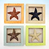 4 Resin Starfish Shadow Boxes