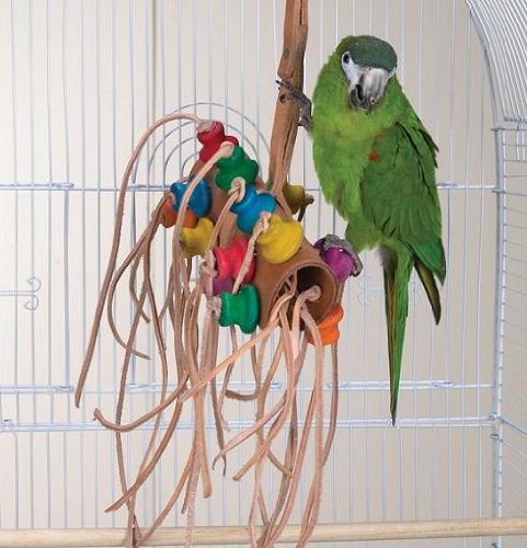 Bird Toy – Wild Series – Bonkers Challenge Toy – Great Toy for Medium to Large Birds