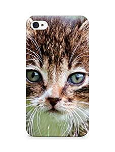 Amez designer printed 3d premium high quality back case cover for Apple iPhone 4 (Kitten mustache)