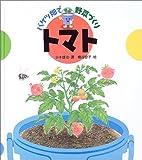 バケツ畑で野菜づくり トマト