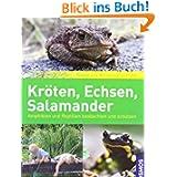 Kröten, Echsen, Salamander: beobachten und schützen: Amphibien und Reptilien beobachten und schützen