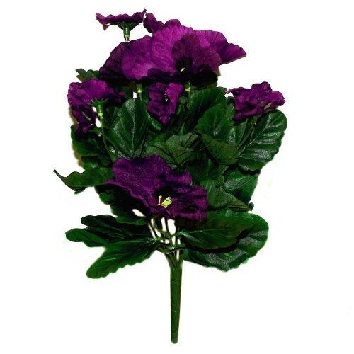 Closer To Nature 27cm Pansy Plug Bedding Plant - Purple