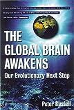 The Global Brain Awakens: Our Next Evolutionary Leap