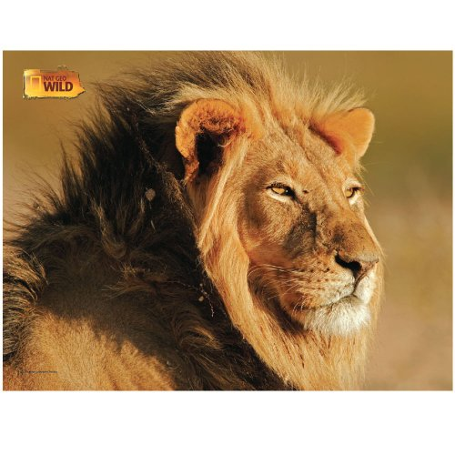 """African Lion"", 100 Pieces Jigsaw Puzzle"