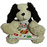 Get Well Gifts - 11 Cuddly Get Well Puppy Dog Plush Gift Set with Jelly Belly Gift Box