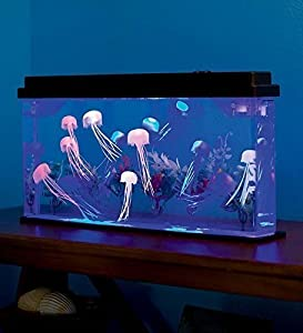 Amazon Com Giant Jellyfish Aquarium With Color Changing Led Lights