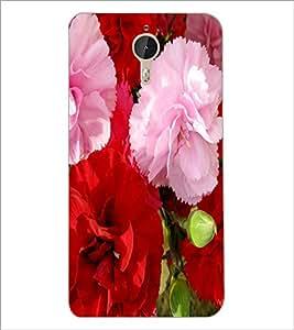 PrintDhaba Flowers D-2400 Back Case Cover for LETV (LE ECO) LE 1 PRO (Multi-Coloured)
